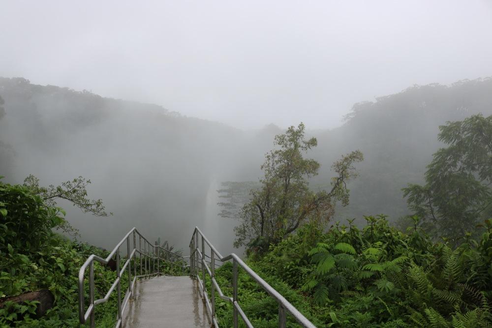 Akaka falls state park Big Island