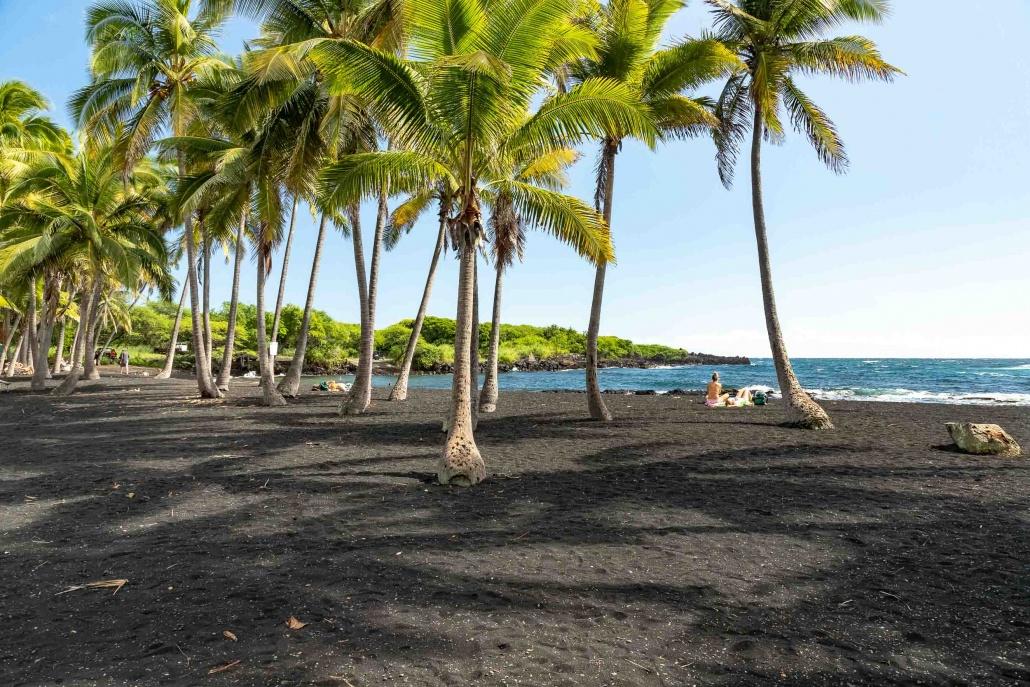 Punalu'u Black Sand Beach Visitors and Coconut Trees Big Island