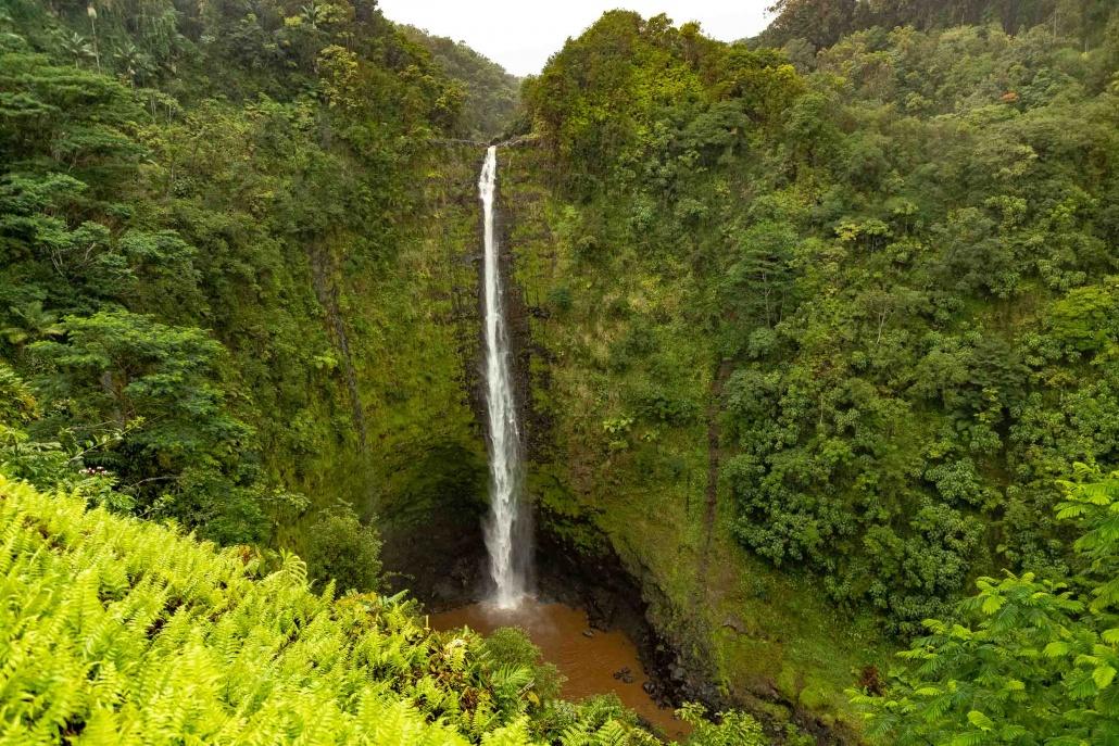 Akaka Falls State Park Waterfall
