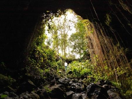 Kaumana Caves Skylight Entrance