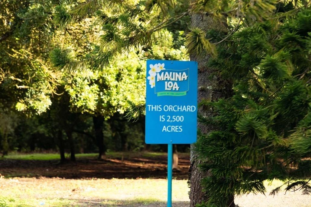 Mauna Loa Macadamia Orchard Sign