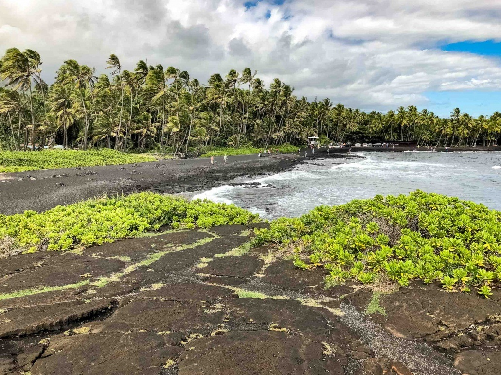 Punaluu Black Sand Greenery