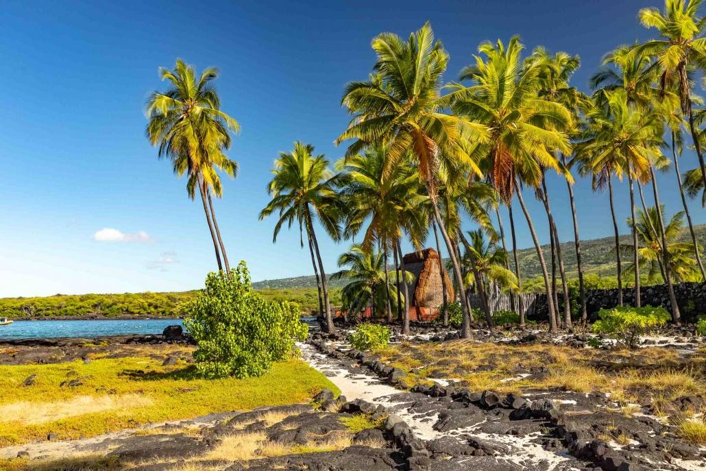 Puuhonua Place of Refuge Hale Palms