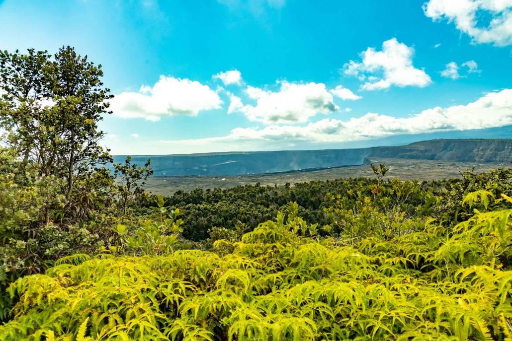 Kilauea Caldera and Tree Ferns Volcanoes National Park Big Island Hawaii
